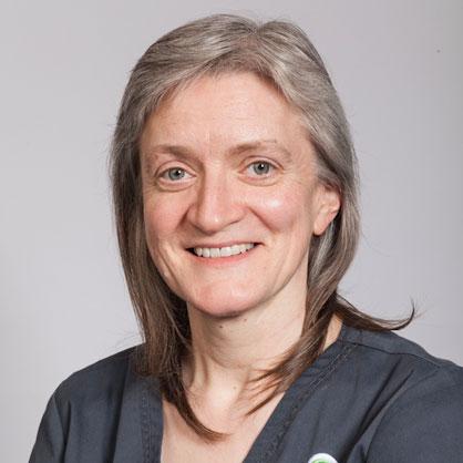 Alex Dugdale, RCVS & European Specialist in Anaesthesia, Chestergates Veterinary Specialist